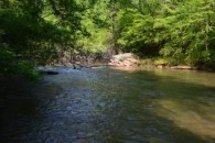 REDUCED!! 61.65 Acres On The Tyger River In District 5