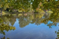 REDUCED!! 5.74 Acres With Pond In Inman