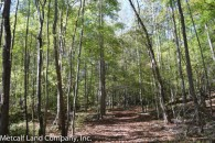 Great Recreational Tract With 2 Ponds - Only 5 Minutes off I-85