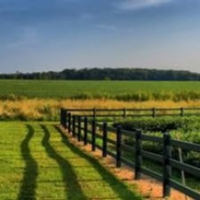 Are you Bored? Buy Rural Land