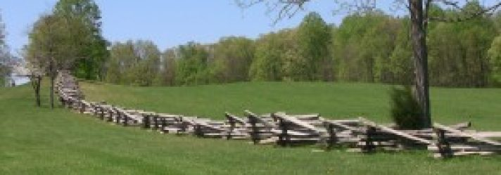 Brush Control Options in Fence Lines