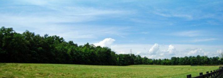 Presentation: Get Your Land on a Buyer's Short List