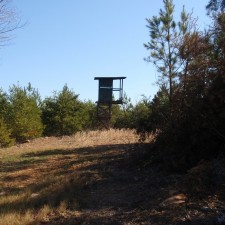 What To Look For When Purchasing Recreational And Hunting Properties