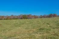 Horse Farms in Walnut Grove - Tracts From 21.17 Acres