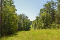 41 Acre Recreational Tract With Farmhouse