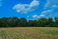 18.5 Acre Cherokee County Mini-Farm at  for 4500