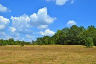 17.8 Acres Near Cooley Springs