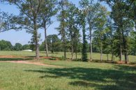 5.4 Acre Mini Farm in Spartanburg County