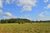 45 Acre Farm In Northern Cherokee County