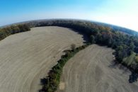 75+/- Acre Farm On Cliffside Highway