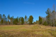 34 Acre Unrestricted Tract Suitable For Horse Farm Or Development