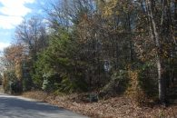 9.05 Acres On Brewton Road, Spartanburg School District 5