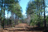 Turn Key Ready Recreational/Timber Property