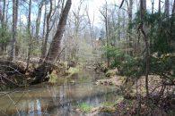 72 Acre Recreational Tract Large Hardwoods & Bold Creek
