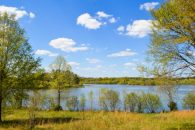 32 Acre Lakefront Property In Laurens County
