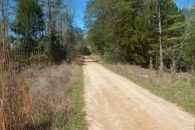 Timber/Recreational Tract With Large Creek
