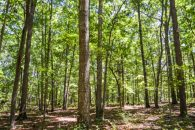 12.12 Acre Wooded Home Site Near Chesnee at  for 4500