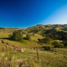 Benefits of Owning Farmland