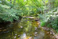 354 Acre Timberland/Recreational Tract In Hickory Grove Community at  for 1331175