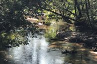 99 Acre River Tract With Well And Septic Tank