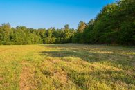 14.64 Acres In Holly Springs