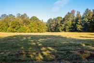 3.7 Acres In Holly Springs