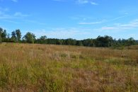 REDUCED!! 21 Acres On Highway 357 In Holly Springs