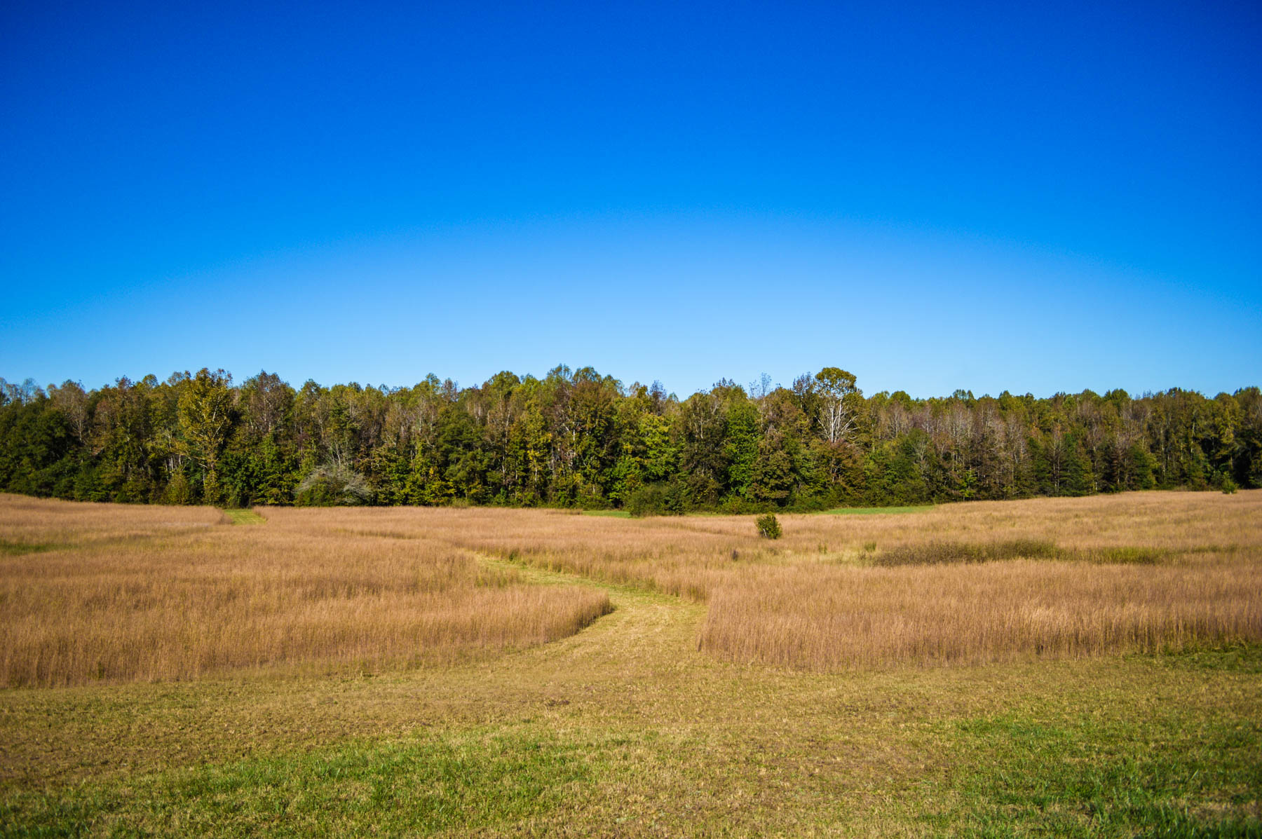 100 York County Sc Land For East Tennessee Land For Sale Hawkins County Tn Ro Maiden Lincoln