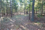 Ideal Recreation Tract In The Heart Of The Piedmont