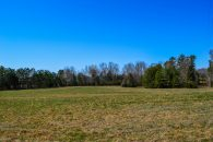 Beautiful 37.5 Acre Farm Near Jonesville