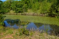 5.01 Acres In Inman With A Pond