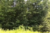 1.57 Acre Home Site In Blacksburg SC at  for 13000