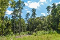 10.5 Acre Wooded Tract In Moore, SC