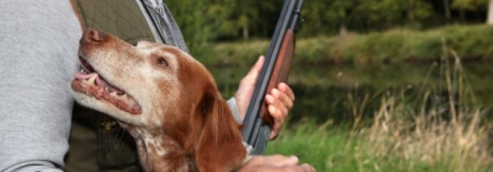 Things to Consider When Buying Hunting Land in South Carolina