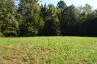 6.62+/- Acres On Devonshire Lane