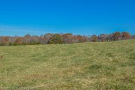 Pasture Land In Walnut Grove 20.03 & 21.17 Acres Adjoining