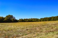 22 Acres Of Level, Open Land Near Moore