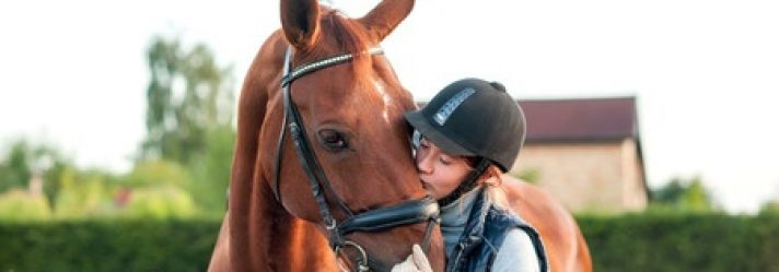 Tips for Buying an Equestrian Property in South Carolina