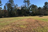 34 Acre Recreational/Residential Tract Laurens County