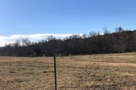 126 Acre Working Cattle Farm, Cattle & Equipment