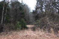 Recreational Hunting Retreat