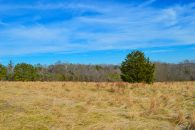19.2 Acres Near Green Creek NC