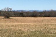 Beautiful Pasture & Homesite Close To Highway 11