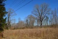 57.5 Acres Near Woodruff