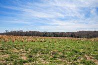 13.75 Acre Mini Farm Convenient To Spartanburg & Greenville