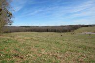 55.27 Acre River Front Mini Farm Convenient To Spartanburg & Greenville