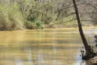 28.97 Acre River Front Wooded Lot Convenient To Spartanburg & Greenville at 306 State Rd S-42-607, Woodruff, SC 29388, USA for 6900