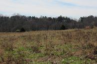 34.75 Acre River Front Mini Farm Convenient To Spartanburg & Greenville