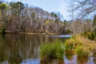 38+/- Acres With Large Private Pond Near Woodruff