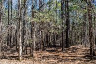 26+/- Acre Recreational Parcel in Woodruff